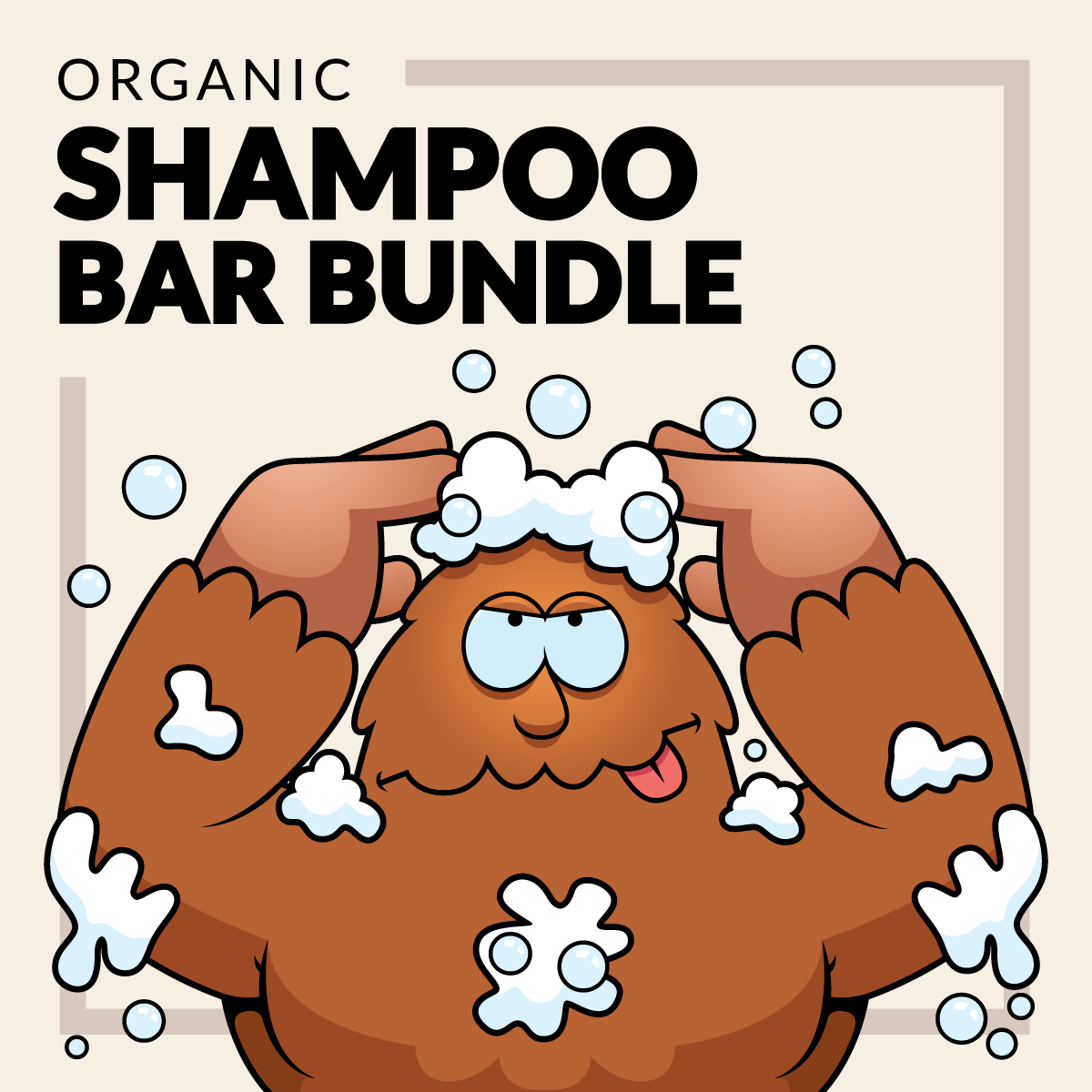 shampoo bar bundle
